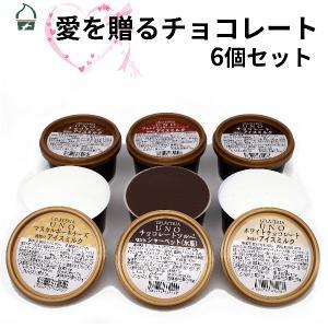チョコレート ジェラート 6個セット 愛をおくるアイス ジェラート 詰め合わせ アイスクリーム バレンタイン 母の日 ギフト お祝い gelateria-uno