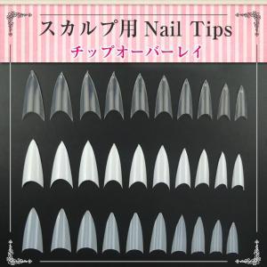 ネイルチップ 長さ出し用つけ爪 スカルプ用ネイルチップ 10...