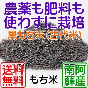 農薬を一切使用せず、化学肥料どころか有機肥料さえも施さずに栽培した稲から収穫した古代米のもち米です...