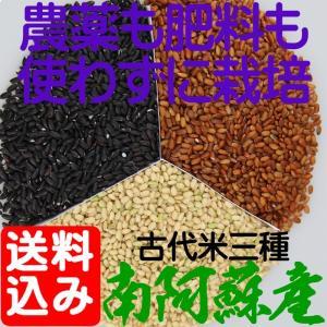黒米・赤米・緑米は、農薬を一切使用せず、化学肥料どころか有機肥料さえも施さずに栽培した稲から収穫し...