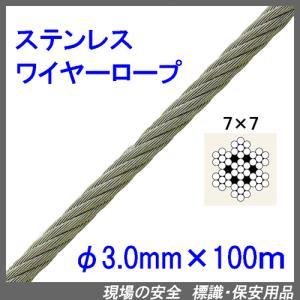 カットステンレスワイヤーロープ7×7(SUS304)寸法:3.0mm×100m|genba-anzen