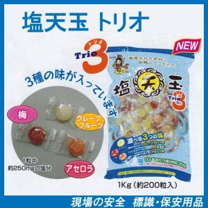 塩分補給キャンディー 塩天玉 トリオ 1袋に3種類の飴!1kg 約200粒入り 熱中対策