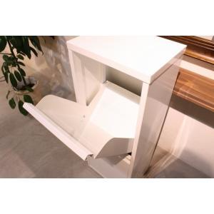 ダストボックス 3分別 薄型 スチール製 キッチン ゴミ箱 sei-ds-77  /雑貨/|genco1|08