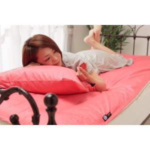 アウトラスト 枕カバー2枚組 プレミアムカラー cl-outlast-pirok|genco1