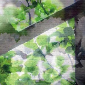 合成アートのファブリックパネル アートパネル PHOTO Mサイズ 30cm×30cm lib-4122286s1|genco1