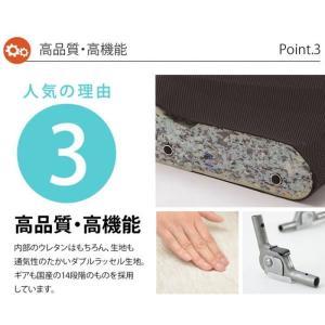 和楽の雲LIGHT 日本製座椅子 リクライニング付きチェアー A448 sg-10097|genco1|12