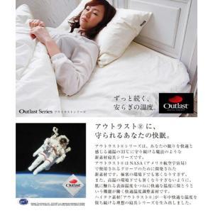 アウトラスト 枕カバー2枚組 cl-tkcr-201-l genco2