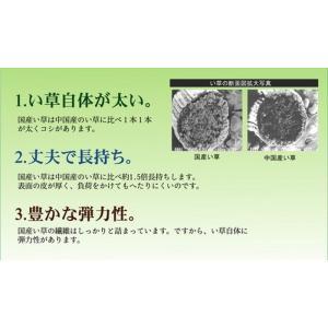 日本製 純国産 置き畳 ユニット畳 天竜 ブラウン 軽量タイプ 約82×164×1.7cm ×4枚、 約82×82×1.7cm ×1枚 ike-4859985s3|genco2|05