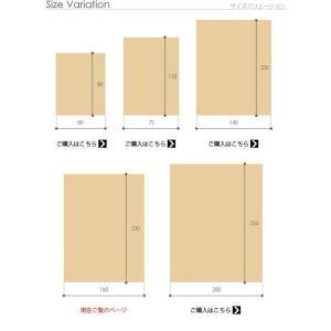 ベルギー製 世界最高密度 ウィルトン織り ラグ ルーヴェン 160x230cm mu-51000037|genco2|14