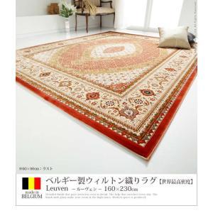 ベルギー製 世界最高密度 ウィルトン織り ラグ ルーヴェン 160x230cm mu-51000037|genco2|04