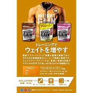 Kentai NEWウェイトゲイン アドバンス ミルクチョコ 1kg|general-purpose