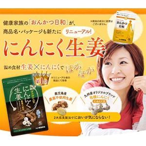 健康家族 にんにく生姜 31粒入 (353mg×31粒入) 低臭加工|general-purpose