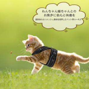 子犬 小型犬 ハーネス 猫 猫用 胴輪 猫具 ねこ ネコ 子猫 散歩 お出かけ 抜けない ベスト ソフト胸あて 軽量 頭を通さずマジックテー|general-purpose
