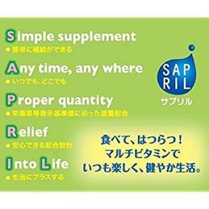 井藤漢方製薬 サプリル マルチビタミン 約30日分 2gX30袋