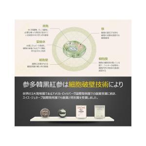 参多韓 紅蔘精 こうじんせい / 240 gram / ジンセノサイド33mg / 全体式 高麗人参/JetMill尖端技術の超微細粉末 並|general-purpose