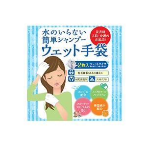 水のいらない泡なしシャンプー ウェット手袋(2枚入)|general-purpose