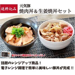 元気豚 焼肉丼&生姜焼丼セット 【送料込み】|genkibuta