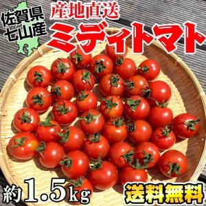 ミディトマト約1.8kg(約50〜60粒)佐賀県七山産の新鮮野菜