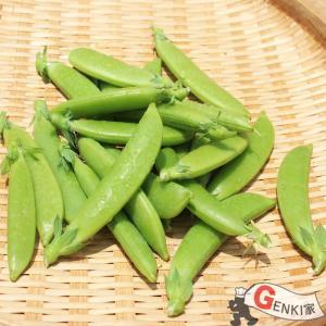 スナップえんどう 1袋 佐賀七山・福岡糸島の新鮮野菜