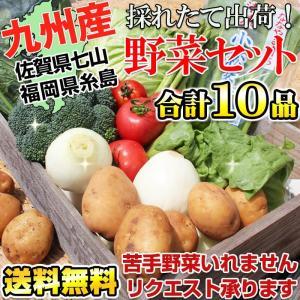 野菜セット 九州新鮮やさい詰め合せ10品 佐賀県七山産&福岡県糸島産(送料無料)・糸島野菜が名医の太鼓判で紹介されました