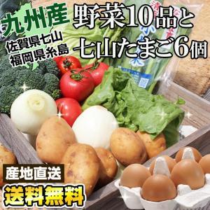 (たまごセット) 九州新鮮やさい詰め合せ10品と七山たまご6...