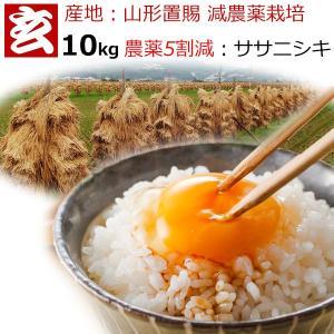 (お米 10kg 送料無料 5kg2袋) 30年産 山形県産 ササニシキ 玄米 10kg 送料無料 (一部地域送料掛かります) 減農薬栽培 栽培者:小林 亮|genmaiya-tarui