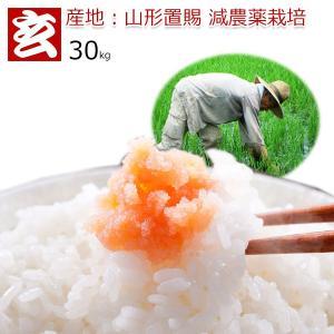 新米28年産 山形県 はえぬき 減農薬 玄米 30kg 送料無料 生産者代表:小林亮氏 特別栽培農産物認証 (1301)