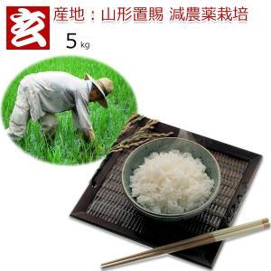 28年産 山形県 置賜産 減農薬米 つや姫 玄米 5kg 送料無料 特別栽培農産物認証 生産者:小林 亮氏 (1302)