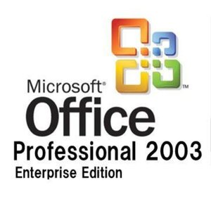 【MS-Office DSP版】 Microsoft Office Professional Enterprise Edition 2003(PIPC版)