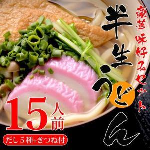 半生うどん15人前 豪華味好みセット|genpei-udon