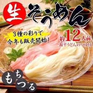 【送料無料】3色生そうめん 約12人前 genpei-udon