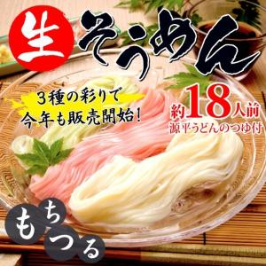 【送料無料】3色生そうめん 約18人前|genpei-udon
