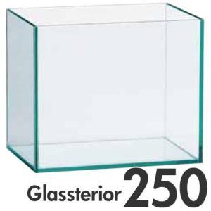 ジェックス GEX グラステリア 250 6点セット |get-square