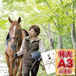 景品 人気 目録引換券 乗馬クラブクレイン 乗馬体験(2回ペアコース)  A3パネル付
