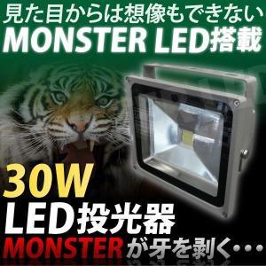 送料無料 LED投光器 30W ディスプレイ/板金/塗装 _75008|ggbank