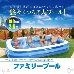プール 大きなプール 262cm×172cm ビニールプール 屋外 水遊び 水浴び 夏 レジャー  _85413|ggbank