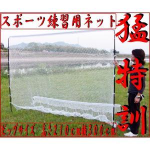 スポーツ練習用ネット 2750×2150mm _86007|ggbank
