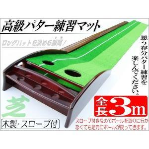 ゴルフ 練習用3mパターマット _86055|ggbank