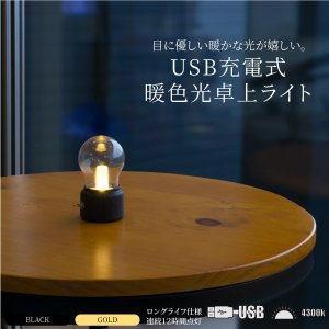 送料無料 led 卓上ライト 電球型 USB 充電式 インテリアライト 暖色系 選べる2色 デスクライト 寝室 パソコンライト 小型  金属製スイッチ レトロ @a910|ggbank