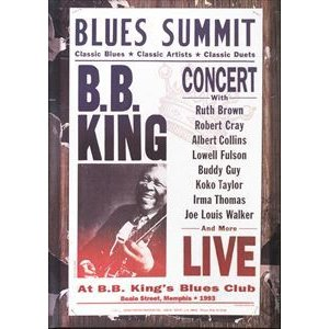 輸入盤 B.B. KING / BLUES SUMMIT CONCERT [DVD]|ggking