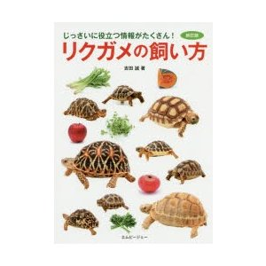リクガメの飼い方 じっさいに役立つ情報がたくさん! ggking