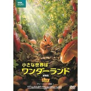 小さな世界はワンダーランド/劇場版 [DVD]|ggking