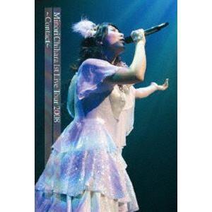 茅原実里/Minori Chihara 1st Live Tour 2008 Contact LIVE DVD [DVD]|ggking