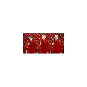 YELLOW MAGIC ORCHESTRA / ソリッド・ステイト・サヴァイヴァー [CD] ggking