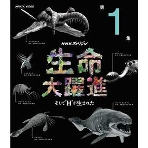 NHKスペシャル 生命大躍進 第1集 [Blu-ray]|ggking