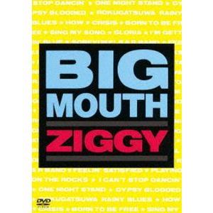 ZIGGY/BIG MOUTH [DVD]|ggking