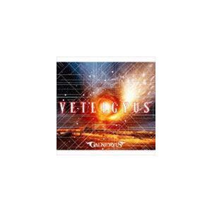 種別:CD Galneryus 解説:2003年アルバム「THE FLAG OF PUNISHMEN...