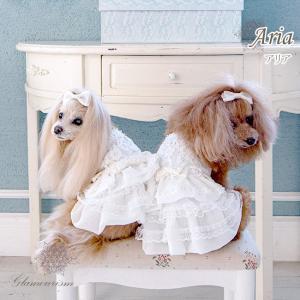 [即納] アリア (Aria) グラマーイズム 犬 服 いぬ ペット ペット用 お洋服 洋服 犬服 ブランド ドッグウェア ドッグ ペット服 ペット用品 愛犬 小型犬|ggtokyo