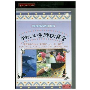 かわいい生き物大集合 DVD レンタル版 レンタル落ち 中古 リユース|gift-goods