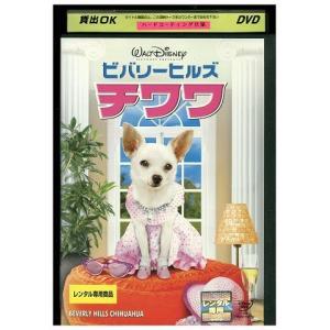 ビバリーヒルズ・チワワ DVD レンタル版 レンタル落ち 中古 リユース|gift-goods